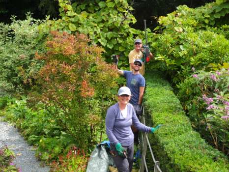 Lynne, Ben and Steve (from front to back) triumphally finishing the pruning of the yew hedge