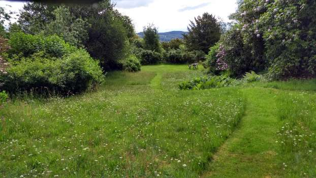 Short grass paths leading through lawn meadows to the pond
