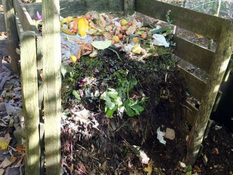 One of our ten or so compost heaps - there are never enough!