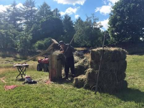Making bales with the hand baler in the hayfield - hot and sticky work!